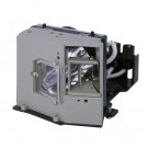 EC.J0901.001 - Genuine ACER Lamp for the PD725P projector model
