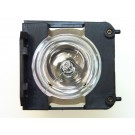 ZU1202 04 4010 - Genuine LIESEGANG Lamp for the MULTI 800 projector model