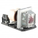 EC.K0100.001 - Genuine ACER Lamp for the X1161 projector model