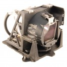 F1LAMP - Genuine TOSHIBA Lamp for the F1 projector model