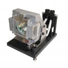 - Genuine VIVITEK Lamp for the D-5600 projector model