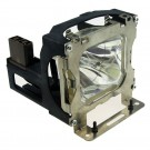 ZU0287 04 4010 - Genuine LIESEGANG Lamp for the DV 550 projector model